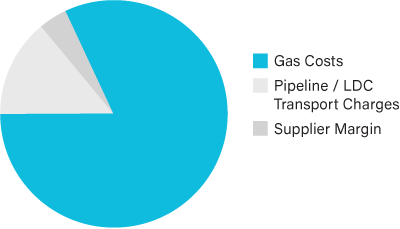 Cost of Gas Pie Chart